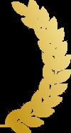 award-feather-2-5beb6523f28e2